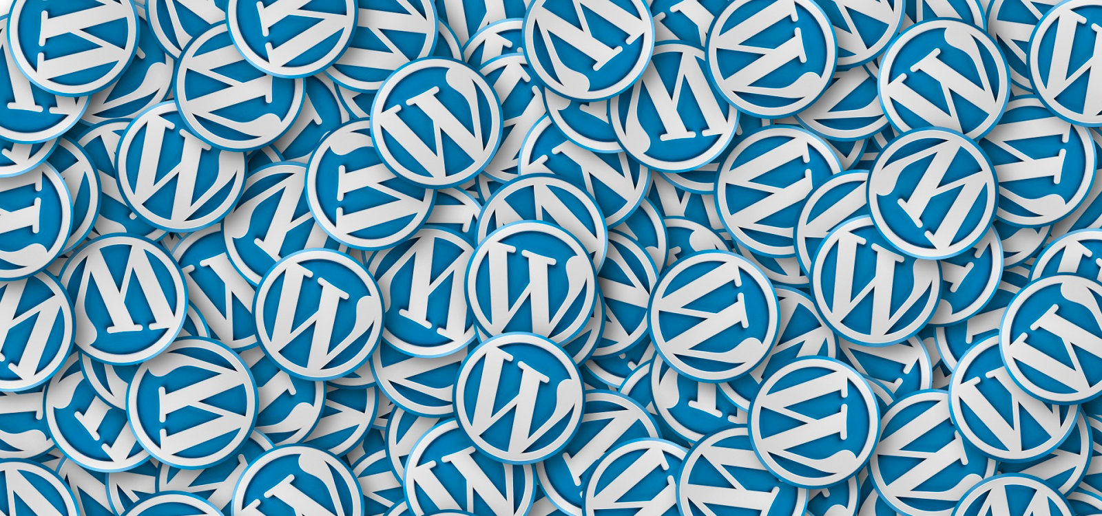 <div class='slider_caption'> <h1>Have an existing or setting up a new WordPress website that you need help with? Then we can help.</h1> <a class='slider-readmore' href=''>Find out more</a> </div>